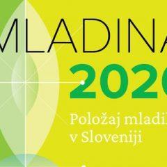 Raziskava Mladina 2020